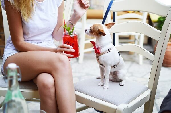 girl with drink and dog | Prestons Beauty Academy